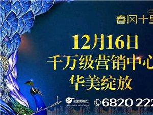 【春风十里】12月16日千万级营销中心华美绽放