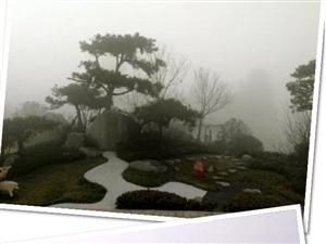 汝州碧桂园【悦读时光】迷雾世界