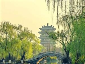 中辰・书香里 | 清明 淡荡春光寒食天,玉炉沈水袅残烟