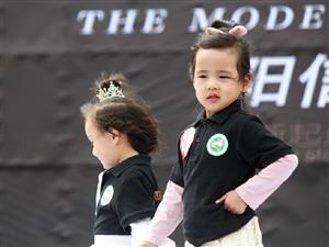 第六届中国好猫步阳信赛区少儿模特选拔赛顺利举办!