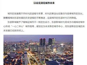桐城繁华向东,影响桐城下一个十年