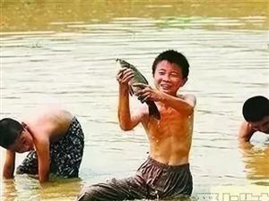 【圣庄园·上园】全民捕鱼狂欢节 千斤鲜鱼等你捕回家!