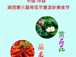 沛�h湖西荷花�暨���r美食��_幕式火爆!