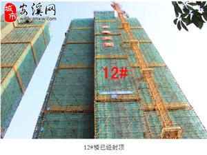 鼎盛金领13#15#楼预选房启动暨10月工程进度