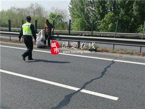 高速交警高阳大队及时消除一起行人上高速的安全隐患