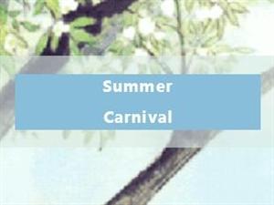 Summer Carnival | 趣�|湖,�_�⑾娜毡�爽派�Γ�