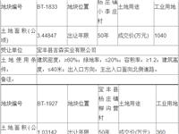 宝丰县自然资源局国有土地使用权招拍挂出让成交公示 2019-006
