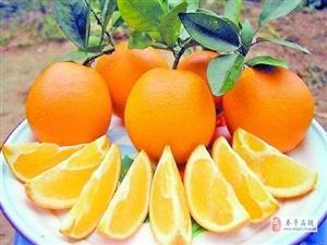 走�M奉�,了解�橙