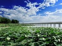 【行走鄱阳】 团林:水乡风情和生命曲线