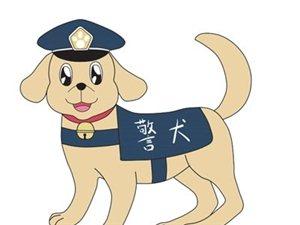 """明仕娱乐""""犬王""""是这样""""炼""""成的 ――记警犬训导员莫粤锋"""
