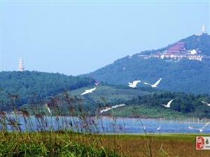 仙山湖�J���劝���w