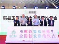 隰县玉露香梨全国品牌推介会在上海盒马鲜生总部举办