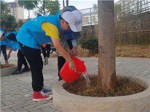 """我县环保志愿者协会在县实验中学开展""""拥抱绿色,爱满校园""""植物认领活动"""