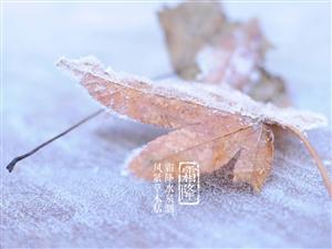 冬�a不如�a霜降!霜降�r��吃些什么?
