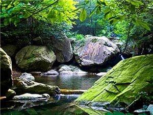 浙北大�{谷:山峰、竹海、瀑布、溪水
