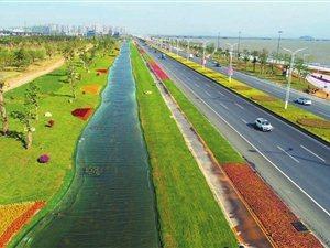 """金湾机场东路: 一条没有雨水管网的""""情侣路"""""""
