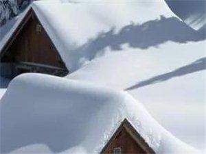 【天气】未来气温继续低迷,濮阳周五将迎今冬初雪...