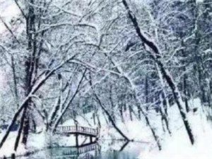 �L�d正式入冬