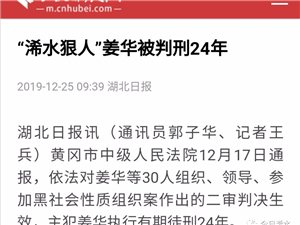 二审判决生效!姜华被判刑24年!该案冻结现金9000万元,查封房产14套、土地一块