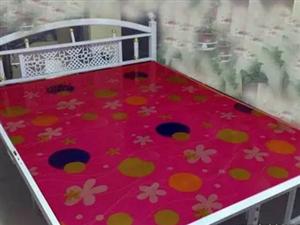 双人铁床+床板床垫210元