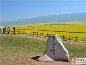 大美青海湖,門源油菜花