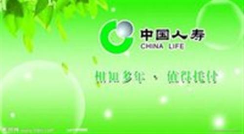 中國人壽合陽支公司銀行保險部