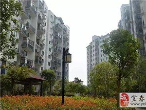 水墨江南茶园三期