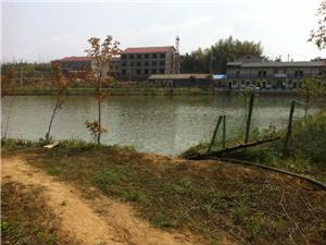 马坡农庄出租