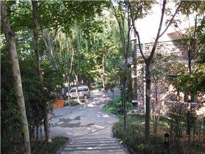 马渡乡村公园别墅