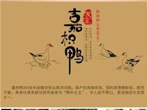 瓊海發寶銷售加積雞,鴨,鵝