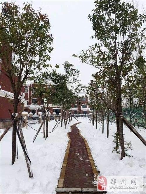 东黄河南岸温泉别墅 送 花园 菜地 露台