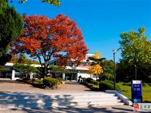 韓國皇室大學,嶺南大學歡迎您