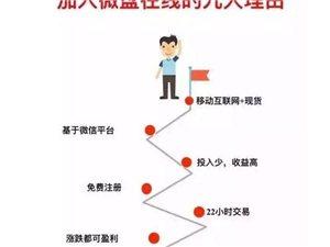 广东微盘在线招商交易平台