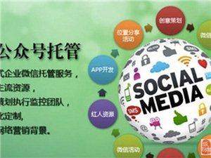 睢县微信公众号开发、托管、睢县网站托管代运营。