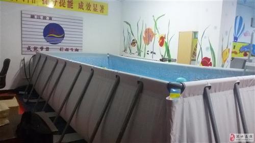 低价出售支架游泳池及游泳设备