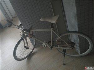 很好騎的自行車.轉讓給有需要的人