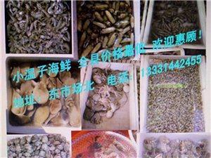 小温子海鲜行全县海鲜价格最低