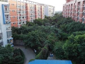 泸县二中门口状元府小区好风水二居室出租