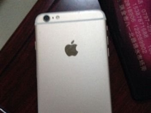 自用苹果6p金色64G全网通 - 3500元