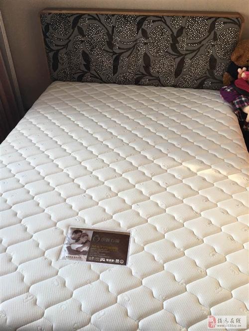 招遠出售全新曲美胡桃木床+床墊+2個床頭柜