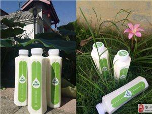 安州区牧场直供有机奶