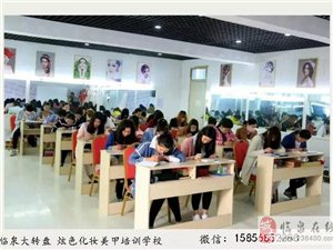 臨泉 炫色化妝美甲半永久培訓學校 《常年招生》