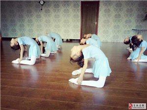金星舞蹈培训开始招生了!