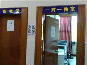 菊勤教育机构