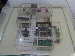 模型�D1