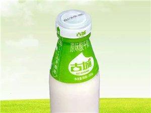 歡迎訂購盂縣古城鮮奶,酸奶!(送貨上門)