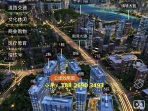 大家好,我是泰禾广场销售小李对项目,区域不了解都可以找我