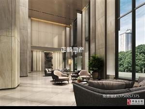 经济特区临街商铺金汇国际1楼可隔2层2楼可隔4层