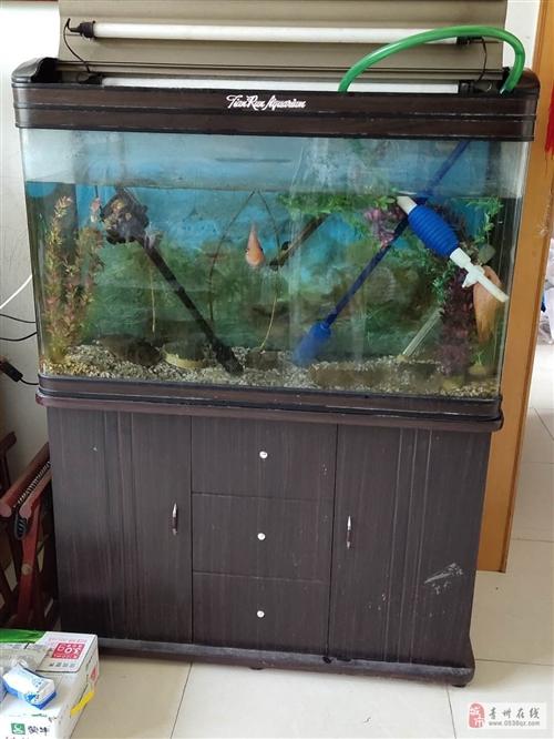 1.2米長的二手魚缸