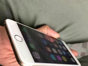 苹果iPhone个人6P手机闲置转让